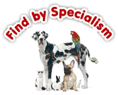 Find pet shops via specliasm