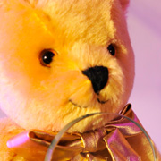 A Golden Teddy Award